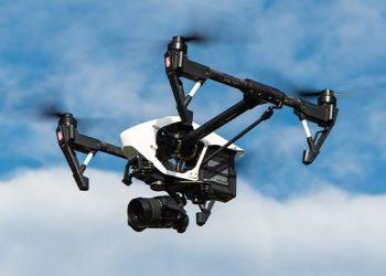 falcon_0004_drone-1080844_1920